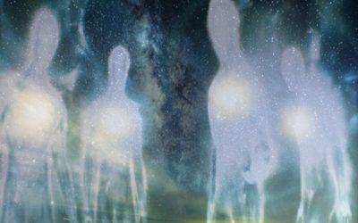 NL – Hoe zouden buitenaardsen willen dat wij ze ontvangen, zouden begroeten op aarde?