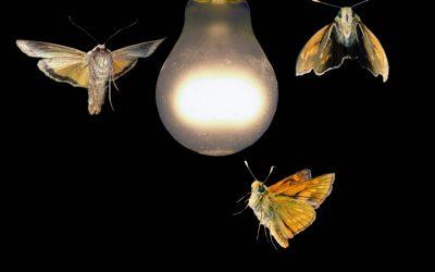 NL – Sneller reizen dan het licht? Hoe overbruggen ET's onze wetenschappelijk bekende grenzen?